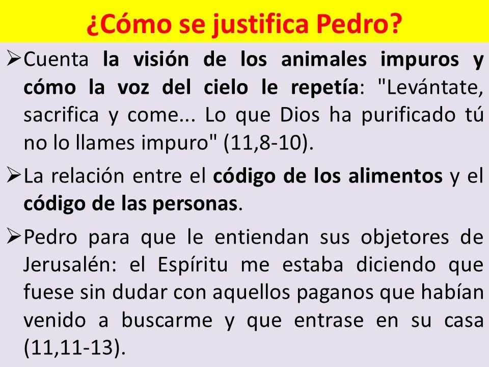 ¿Cómo se justifica Pedro? Cuenta la visión de los animales impuros y cómo la voz del cielo le repetía: