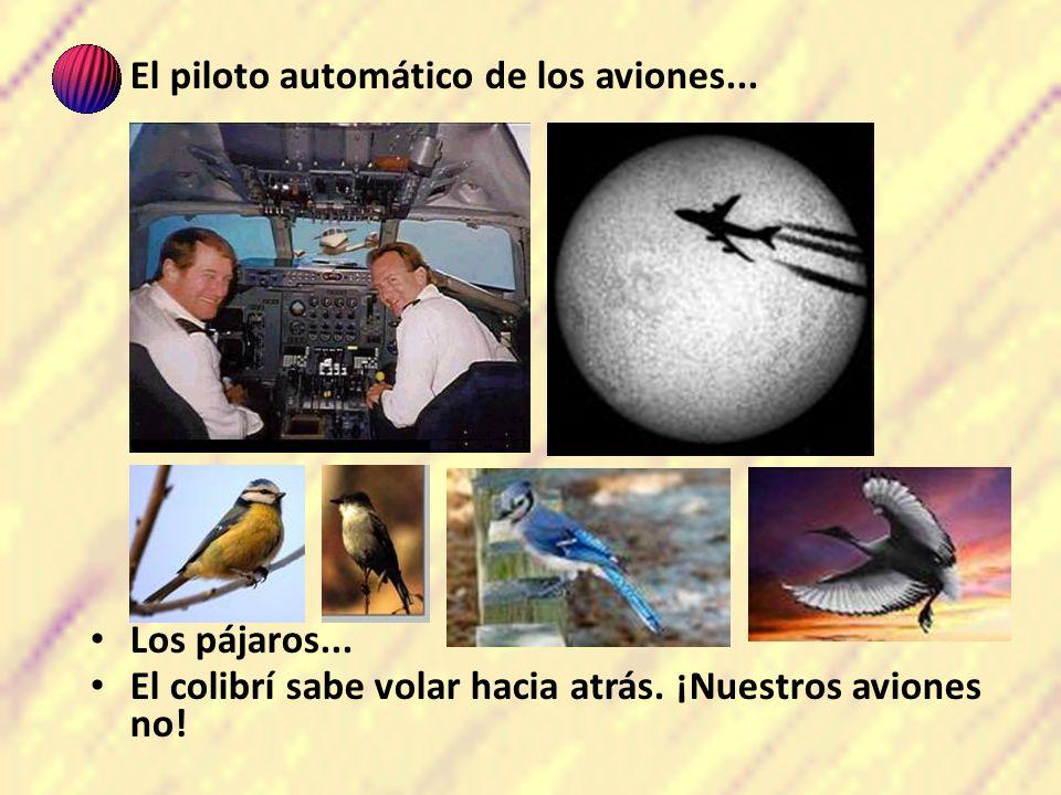 El piloto automático de los aviones... Los pájaros... El colibrí sabe volar hacia atrás. ¡Nuestros aviones no!