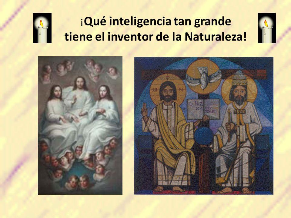 ¡ Qué inteligencia tan grande tiene el inventor de la Naturaleza!