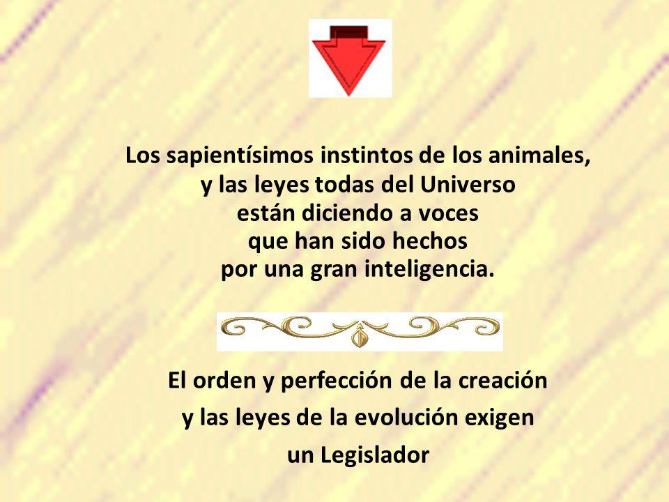 Los sapientísimos instintos de los animales, y las leyes todas del Universo están diciendo a voces que han sido hechos por una gran inteligencia. El o