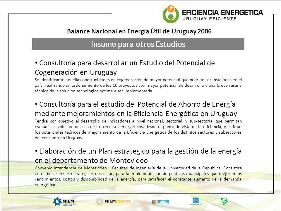 Insumo para otros Estudios Balance Nacional en Energía Útil de Uruguay 2006 Consultoría para desarrollar un Estudio del Potencial de Cogeneración en U