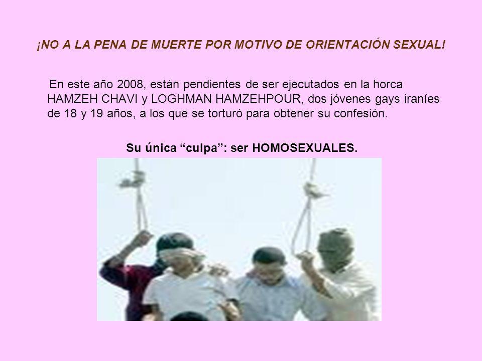 ¡NO A LA PENA DE MUERTE POR MOTIVO DE ORIENTACIÓN SEXUAL! En este año 2008, están pendientes de ser ejecutados en la horca HAMZEH CHAVI y LOGHMAN HAMZ