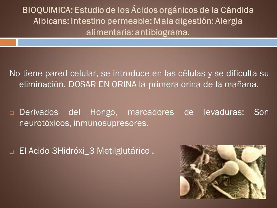 BIOQUIMICA: Estudio de los Ácidos orgánicos de la Cándida Albicans: Intestino permeable: Mala digestión: Alergia alimentaria: antibiograma. No tiene p