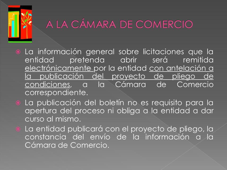 La información general sobre licitaciones que la entidad pretenda abrir será remitida electrónicamente por la entidad con antelación a la publicación