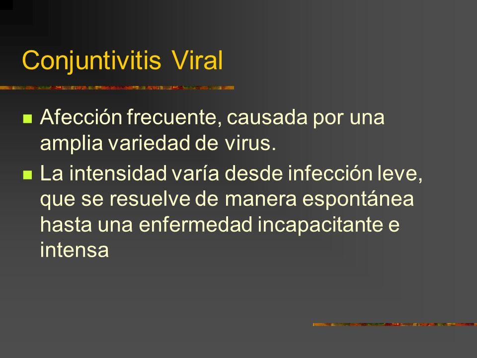 Conjuntivitis Viral Afección frecuente, causada por una amplia variedad de virus. La intensidad varía desde infección leve, que se resuelve de manera