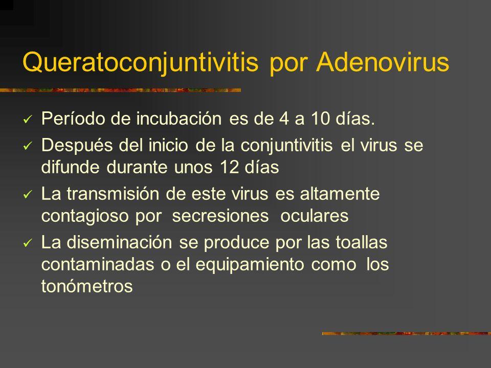 Queratoconjuntivitis por Adenovirus Período de incubación es de 4 a 10 días. Después del inicio de la conjuntivitis el virus se difunde durante unos 1