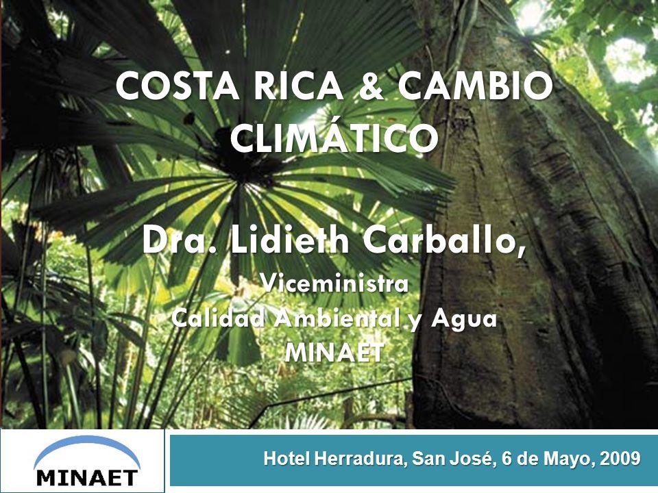 COSTA RICA & CAMBIO CLIMÁTICO Dra. Lidieth Carballo, Viceministra Calidad Ambiental y Agua MINAET Hotel Herradura, San José, 6 de Mayo, 2009