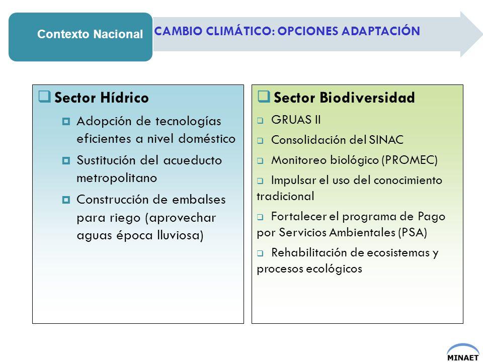 Contexto Nacional CAMBIO CLIMÁTICO: OPCIONES ADAPTACIÓN Sector Hídrico Adopción de tecnologías eficientes a nivel doméstico Sustitución del acueducto