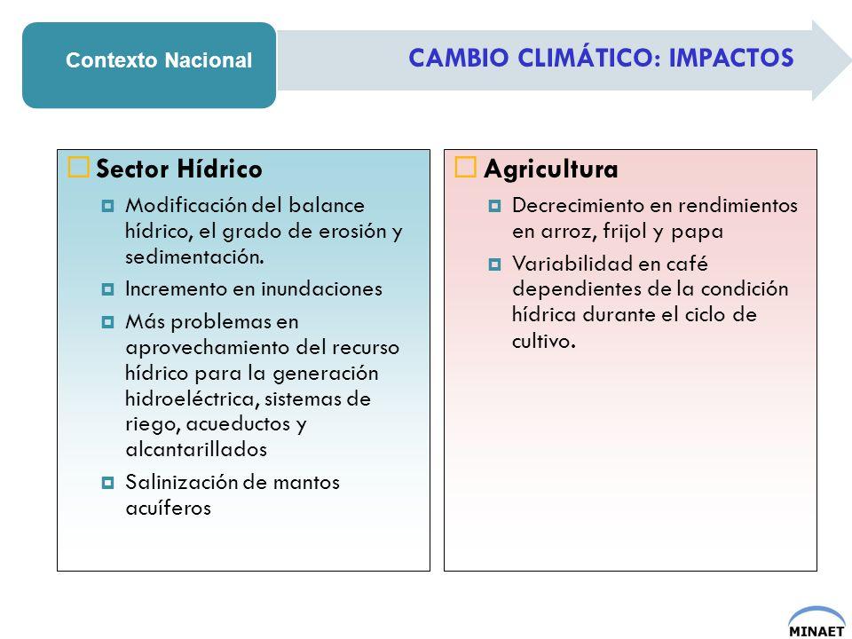 CAMBIO CLIMÁTICO: IMPACTOS Contexto Nacional Sector Hídrico Modificación del balance hídrico, el grado de erosión y sedimentación. Incremento en inund