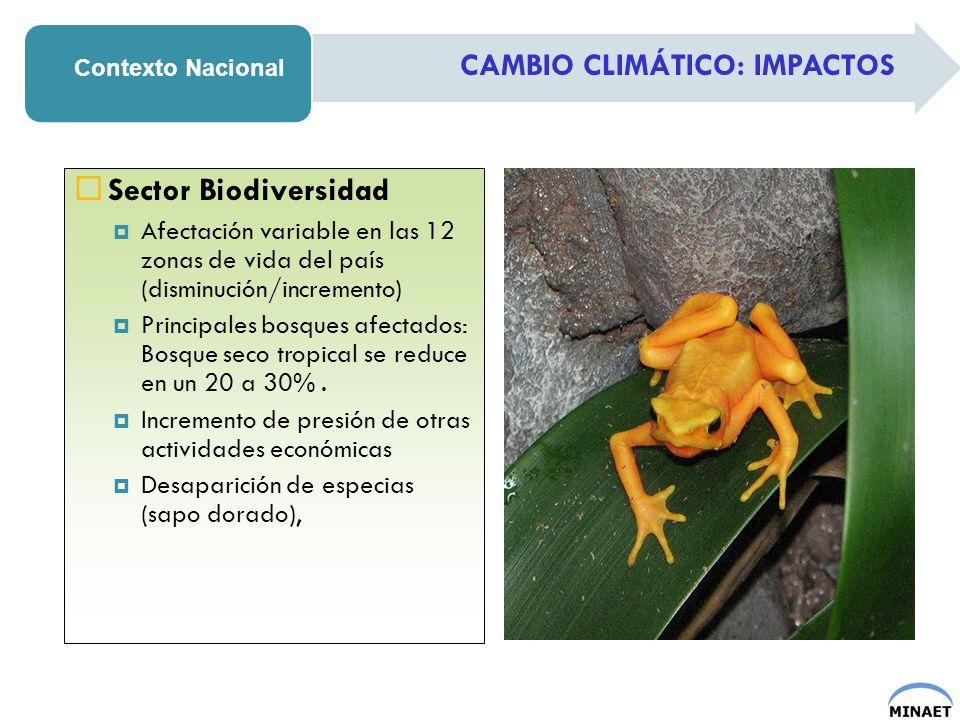 CAMBIO CLIMÁTICO: IMPACTOS Contexto Nacional Sector Biodiversidad Afectación variable en las 12 zonas de vida del país (disminución/incremento) Princi