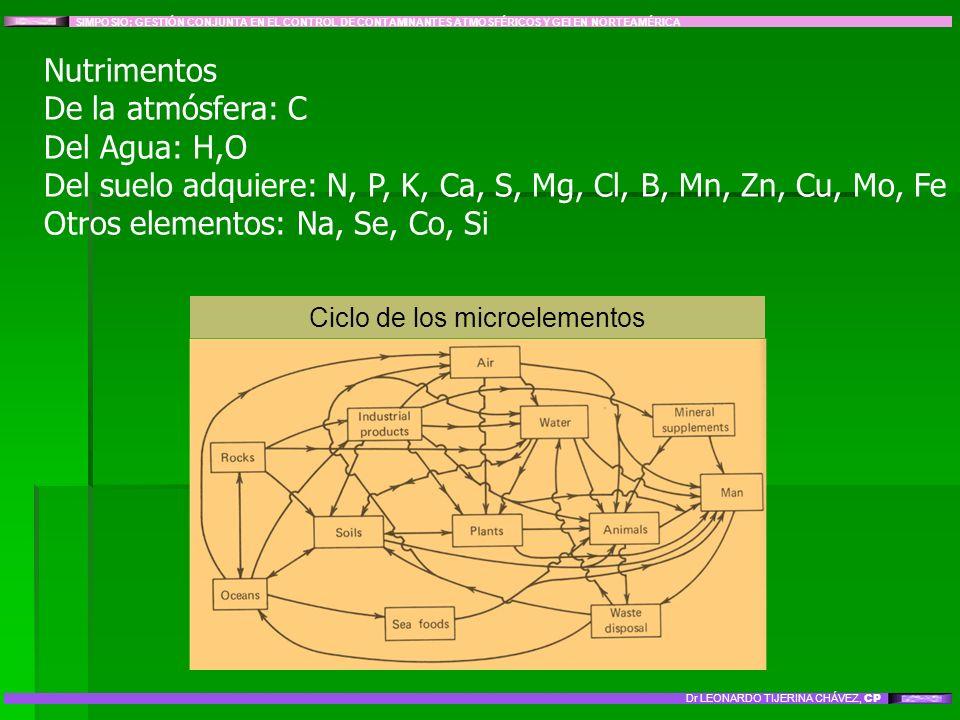 Nutrimentos De la atmósfera: C Del Agua: H,O Del suelo adquiere: N, P, K, Ca, S, Mg, Cl, B, Mn, Zn, Cu, Mo, Fe Otros elementos: Na, Se, Co, Si SIMPOSI