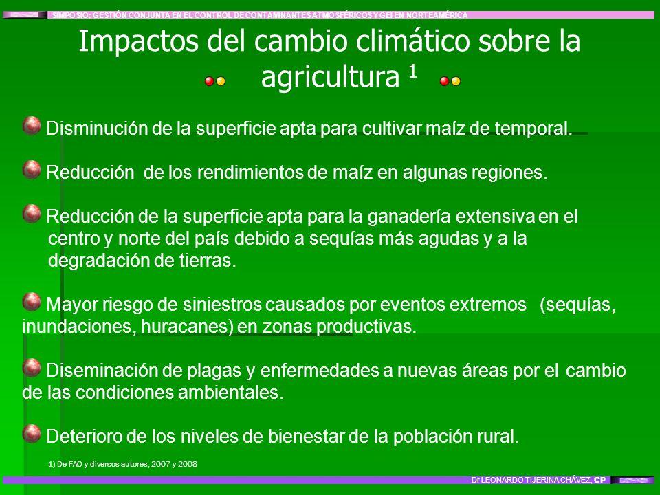 Disminución de la superficie apta para cultivar maíz de temporal. Reducción de los rendimientos de maíz en algunas regiones. Reducción de la superfici