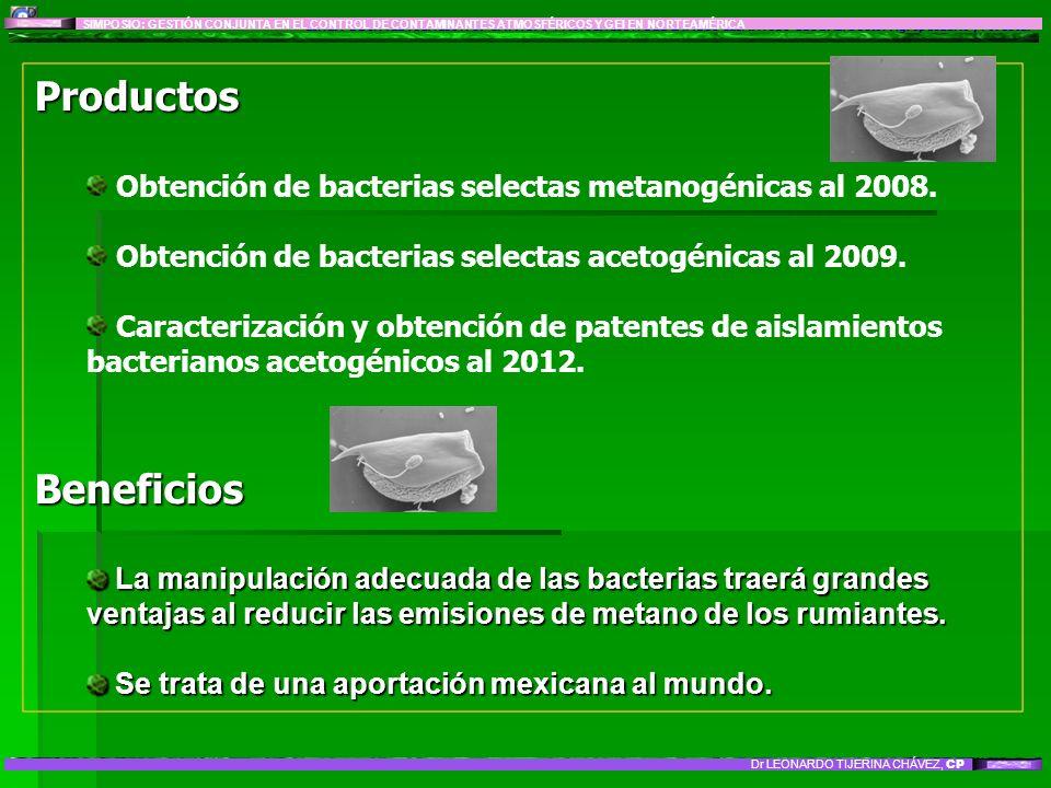 LÍNEA DE INVESTIGACIÓN 8: IMPACTO Y MITIGACIÓN DEL CAMBIO CLIMÁTICO GLOBAL: Sector Agropecuario y Forestal Productos Obtención de bacterias selectas m