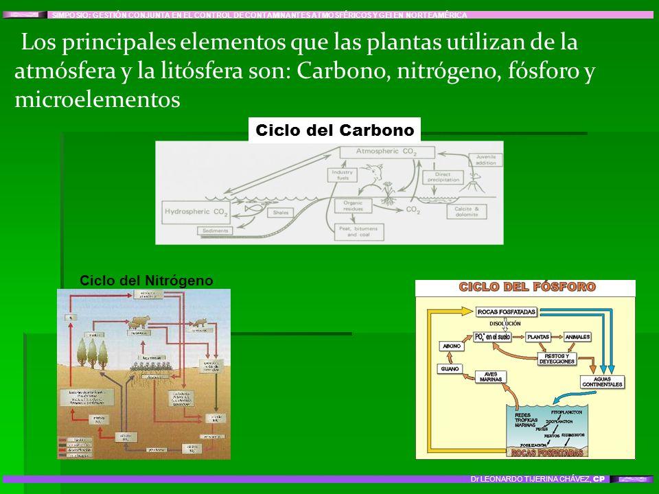 Los principales elementos que las plantas utilizan de la atmósfera y la litósfera son: Carbono, nitrógeno, fósforo y microelementos SIMPOSIO: GESTIÓN