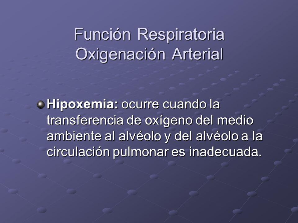 Función Respiratoria Oxigenación Arterial Hipoxemia: ocurre cuando la transferencia de oxígeno del medio ambiente al alvéolo y del alvéolo a la circul