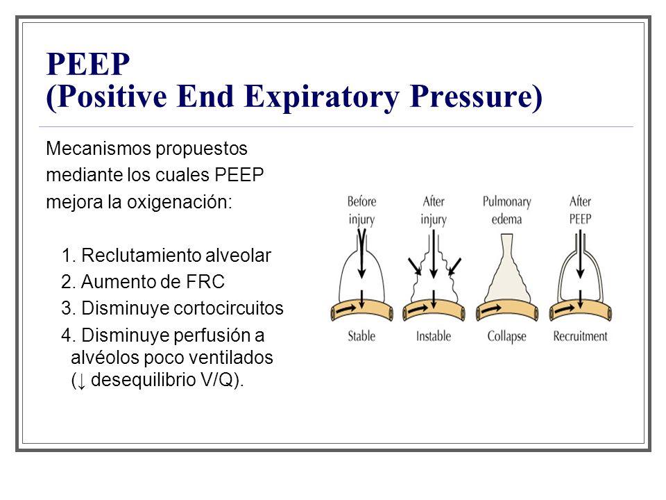 PEEP (Positive End Expiratory Pressure) Mecanismos propuestos mediante los cuales PEEP mejora la oxigenación: 1. Reclutamiento alveolar 2. Aumento de