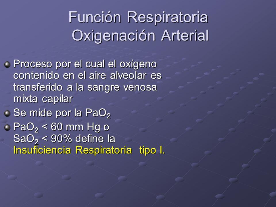 Función Respiratoria Oxigenación Arterial Proceso por el cual el oxígeno contenido en el aire alveolar es transferido a la sangre venosa mixta capilar