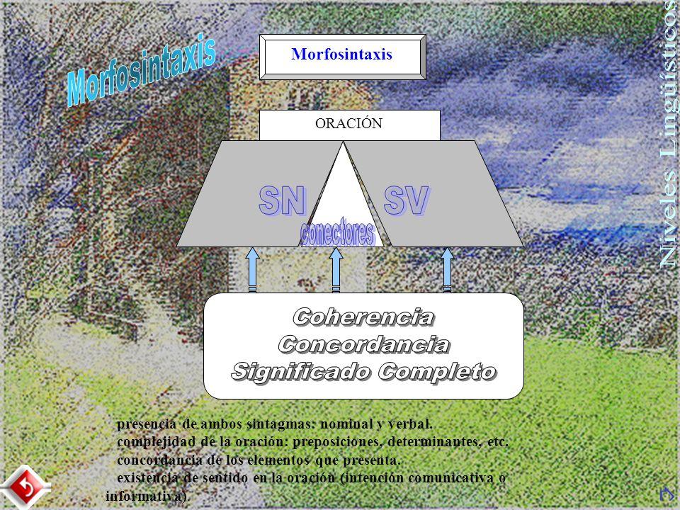 Morfosintaxis ORACIÓN presencia de ambos sintagmas: nominal y verbal. complejidad de la oración: preposiciones, determinantes, etc. concordancia de lo