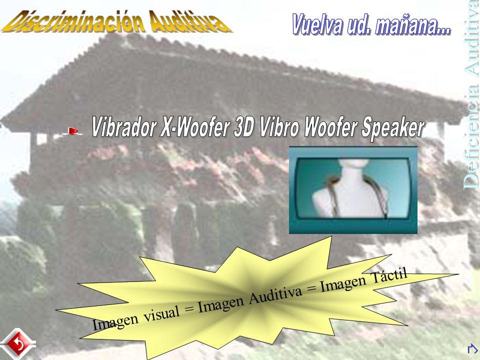Imagen visual = Imagen Auditiva = Imagen Táctil
