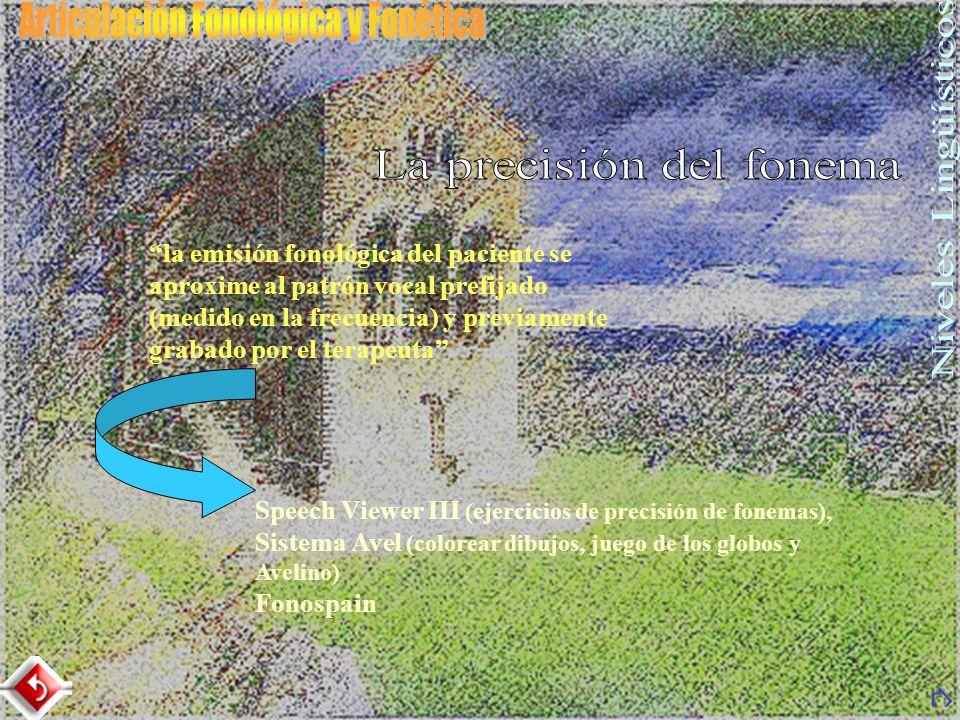 Speech Viewer III (contraste de 2 fonemas y 4 fonemas) Sistema Avel (Juego del laberinto y las canastas) SAS (Tarjeta Visha) con 6 patrones o modelos de voz Sedea con voz susurrada, impostada y conversacional, de hombre y de mujer.