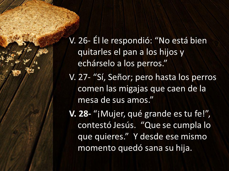 V. 26- Él le respondió: No está bien quitarles el pan a los hijos y echárselo a los perros. V. 27- Sí, Señor; pero hasta los perros comen las migajas
