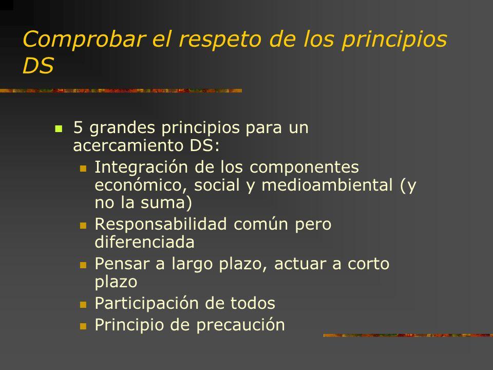 Comprobar el respeto de los principios DS 5 grandes principios para un acercamiento DS: Integración de los componentes económico, social y medioambiental (y no la suma) Responsabilidad común pero diferenciada Pensar a largo plazo, actuar a corto plazo Participación de todos Principio de precaución