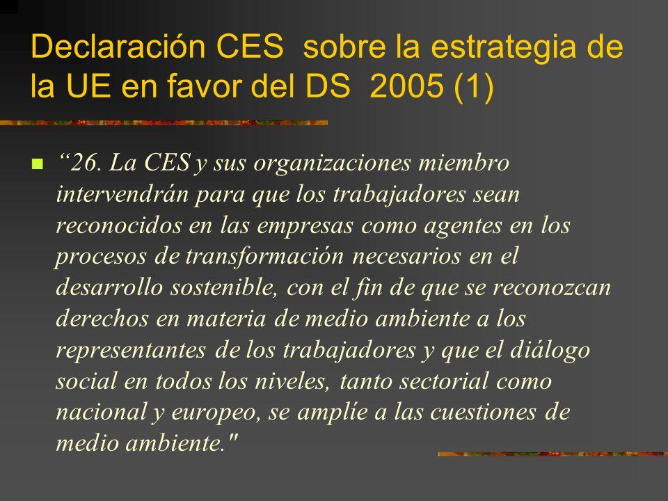 Declaración CES sobre la estrategia de la UE en favor del DS 2005 (1) 26.