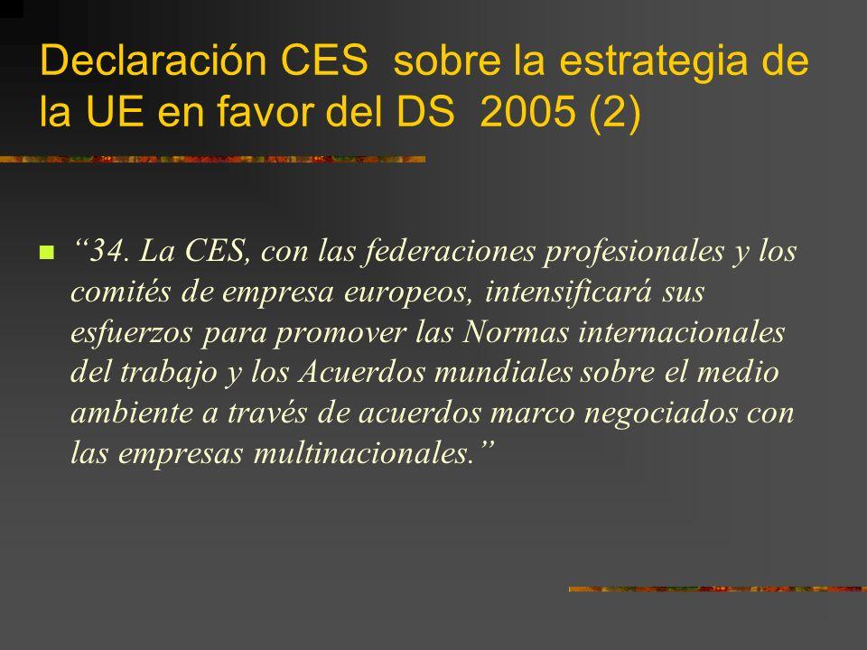 Declaración CES sobre la estrategia de la UE en favor del DS 2005 (2) 34.