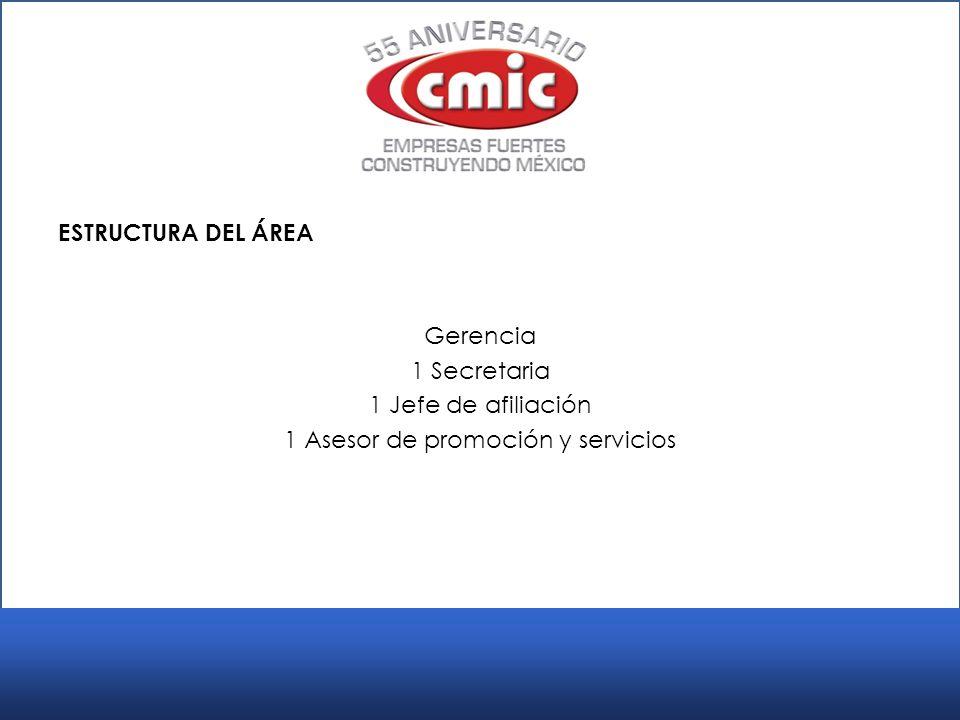 ESTRUCTURA DEL ÁREA Gerencia 1 Secretaria 1 Jefe de afiliación 1 Asesor de promoción y servicios
