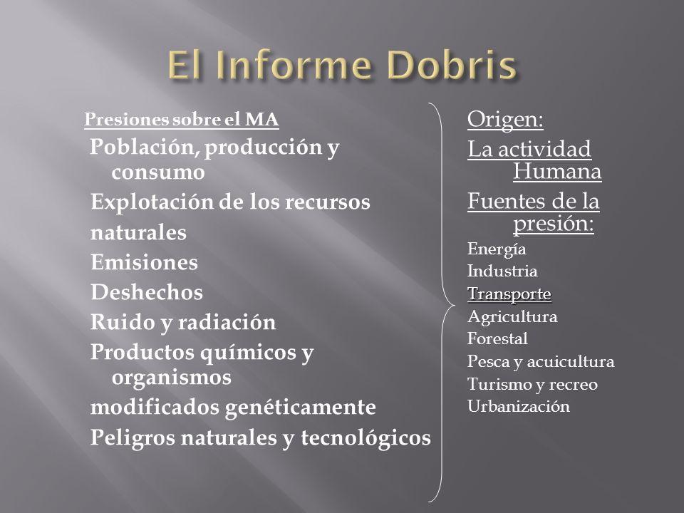 Presiones sobre el MA Población, producción y consumo Explotación de los recursos naturales Emisiones Deshechos Ruido y radiación Productos químicos y