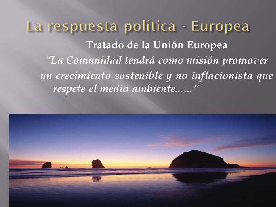 LA RESPUESTA POLÍTICA – ESPECÍFICA - INTERNACIONAL La Política Ambiental de Naciones Unidas: OMI: Programa Global para Protección del Medio Marino Auspicia: –Convenios Internacionales C.