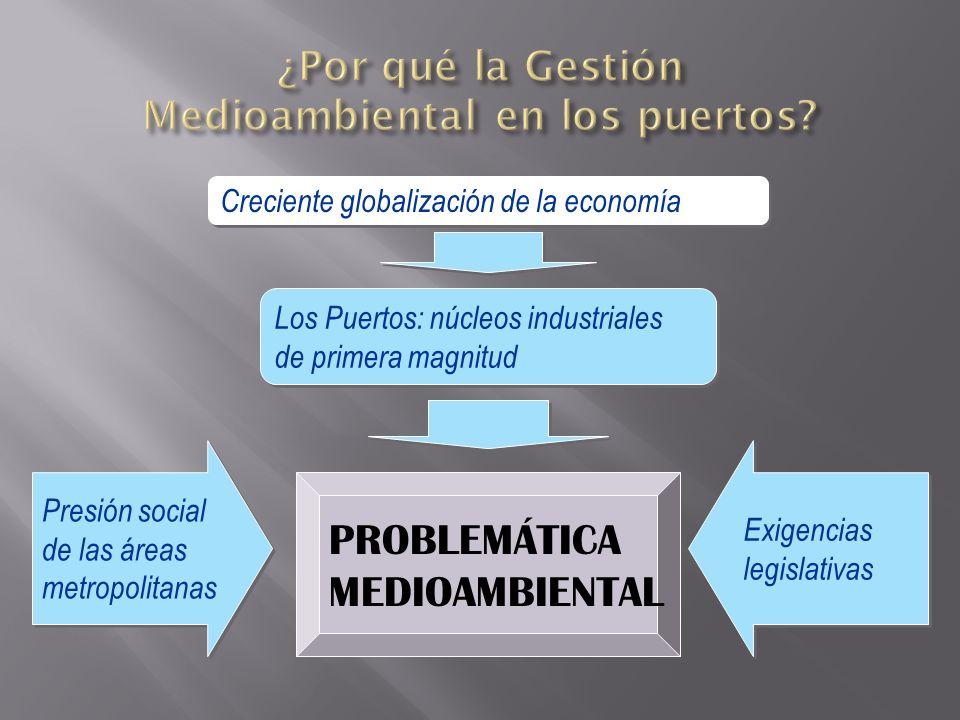 Creciente globalización de la economía Presión social de las áreas metropolitanas Presión social de las áreas metropolitanas Los Puertos: núcleos indu