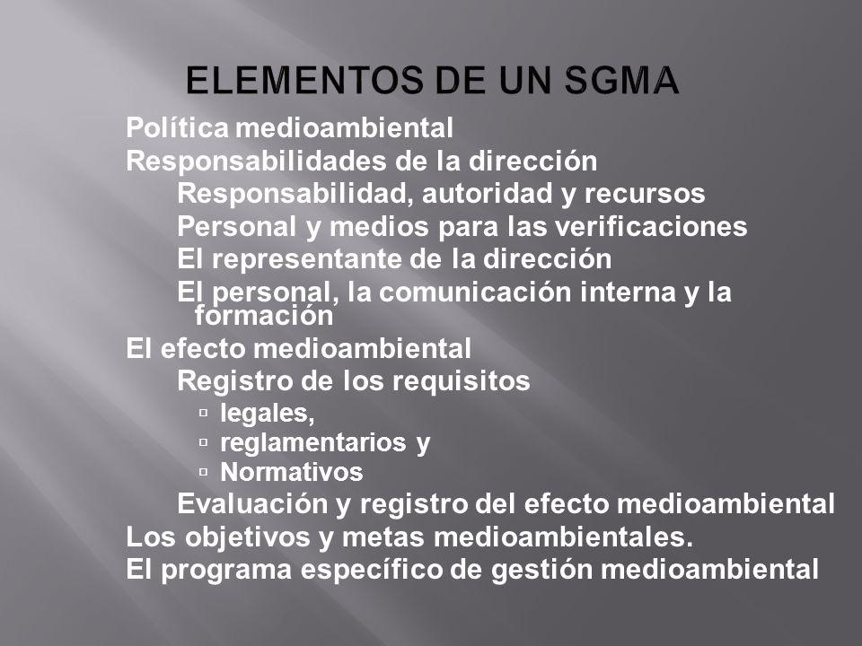 Política medioambiental Responsabilidades de la dirección Responsabilidad, autoridad y recursos Personal y medios para las verificaciones El represent