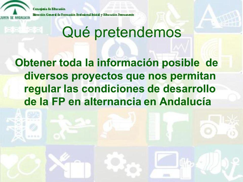 Qué pretendemos Obtener toda la información posible de diversos proyectos que nos permitan regular las condiciones de desarrollo de la FP en alternanc