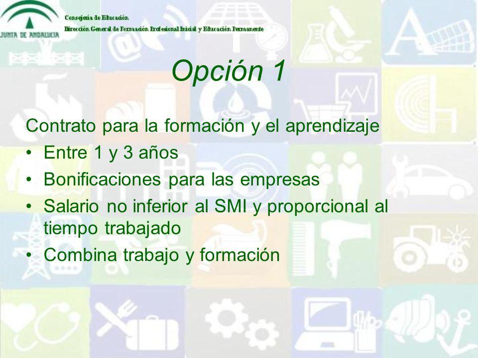 Opción 1 Contrato para la formación y el aprendizaje Entre 1 y 3 años Bonificaciones para las empresas Salario no inferior al SMI y proporcional al ti
