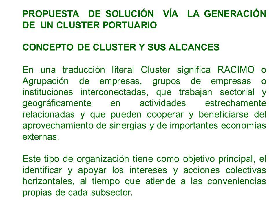 PROPUESTA DE SOLUCIÓN VÍA LA GENERACIÓN DE UN CLUSTER PORTUARIO CONCEPTO DE CLUSTER Y SUS ALCANCES En una traducción literal Cluster significa RACIMO
