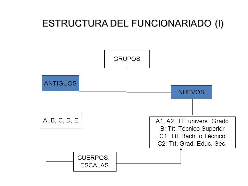 ESTRUCTURA DEL FUNCIONARIADO (I) GRUPOS ANTIGÜOS NUEVOS A, B, C, D, E A1, A2: Tít. univers. Grado B: Tít. Técnico Superior C1: Tít. Bach. o Técnico C2