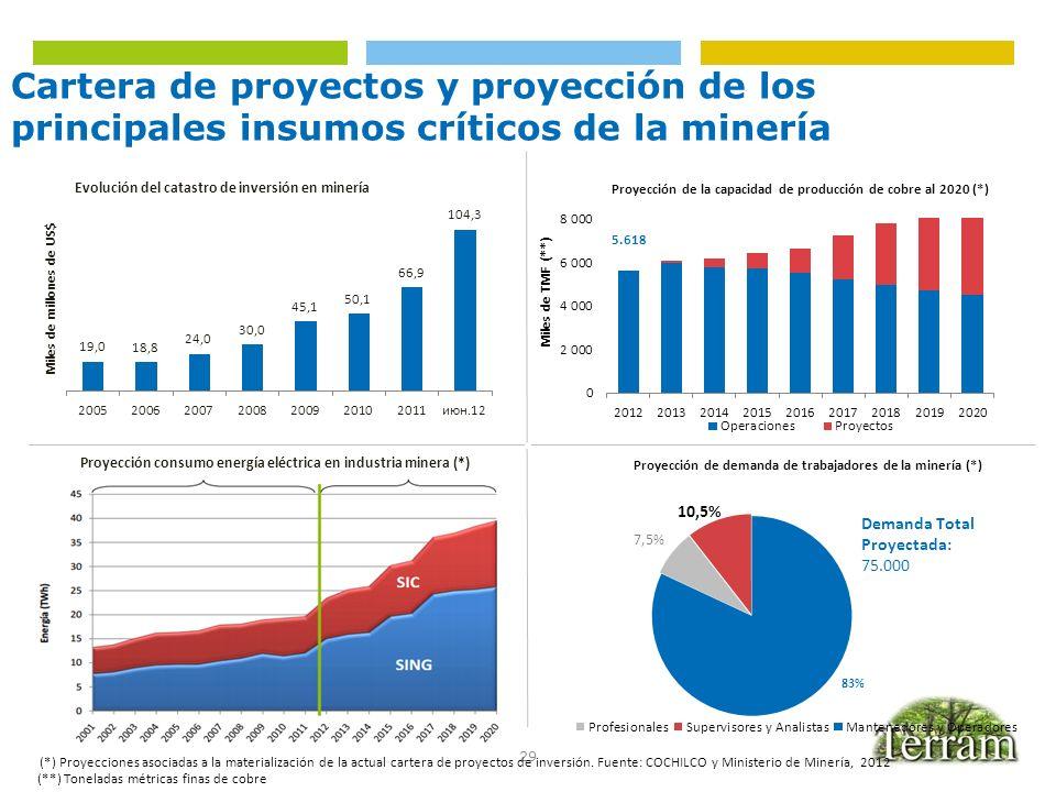 29 Cartera de proyectos y proyección de los principales insumos críticos de la minería (*) Proyecciones asociadas a la materialización de la actual ca