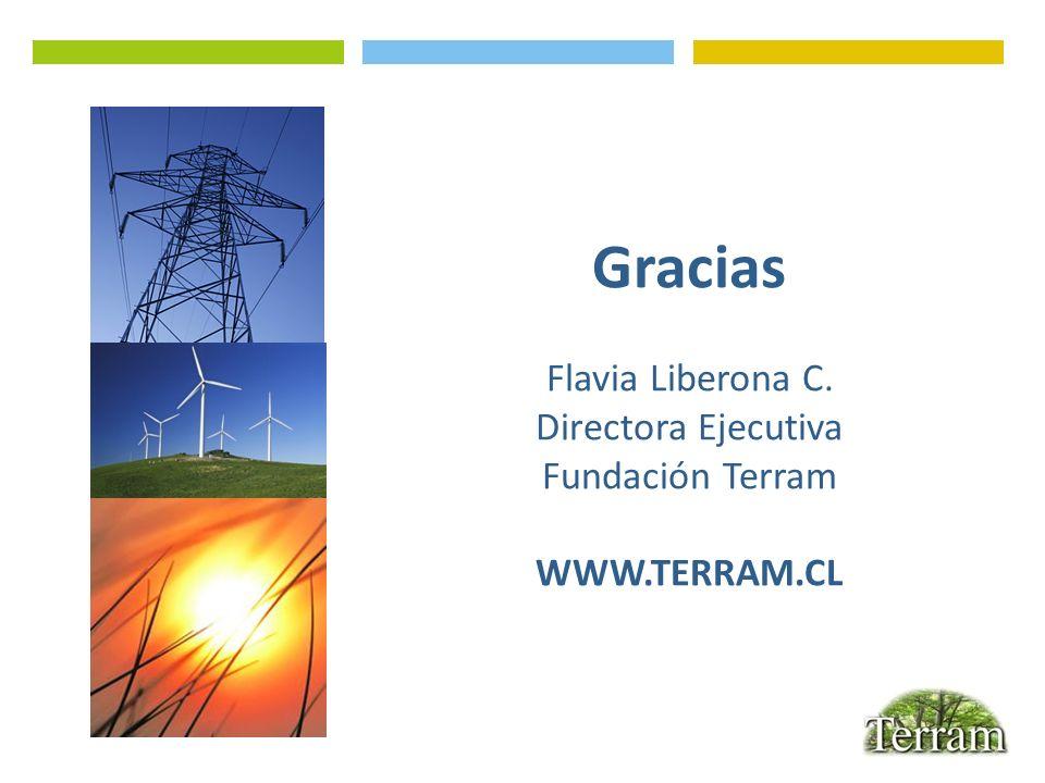Gracias Flavia Liberona C. Directora Ejecutiva Fundación Terram WWW.TERRAM.CL