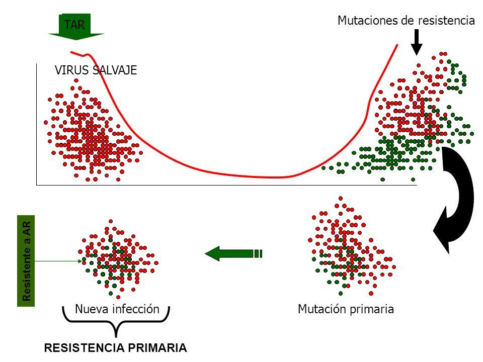Mutaciones de resistencia VIRUS SALVAJE TAR Nueva infección Resistente a AR RESISTENCIA PRIMARIA Tiempo sin TAR