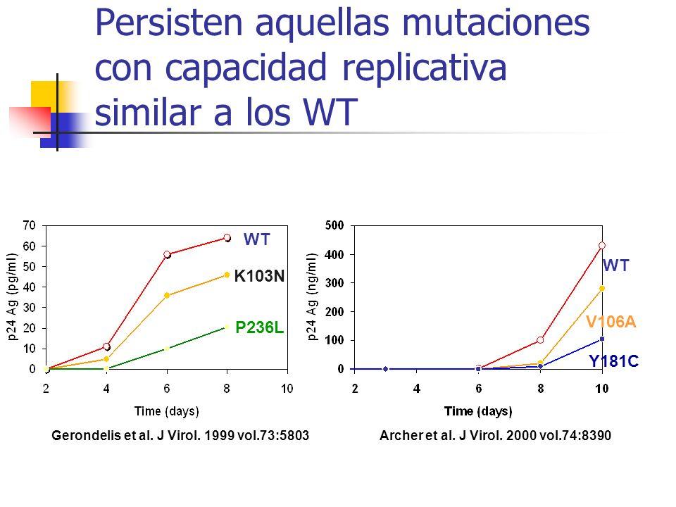 Secuenciación de ADN en pacientes con más de 1 año de infección WT K103N WT L74V K65R M184V >20% Secuenciación