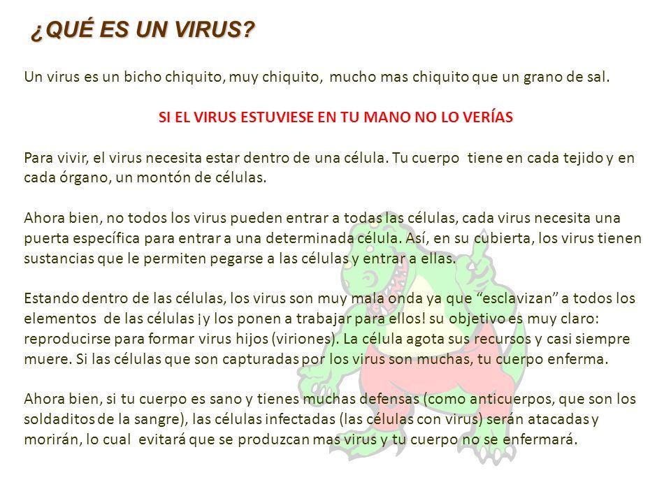 Un virus es un bicho chiquito, muy chiquito, mucho mas chiquito que un grano de sal. SI EL VIRUS ESTUVIESE EN TU MANO NO LO VERÍAS Para vivir, el viru