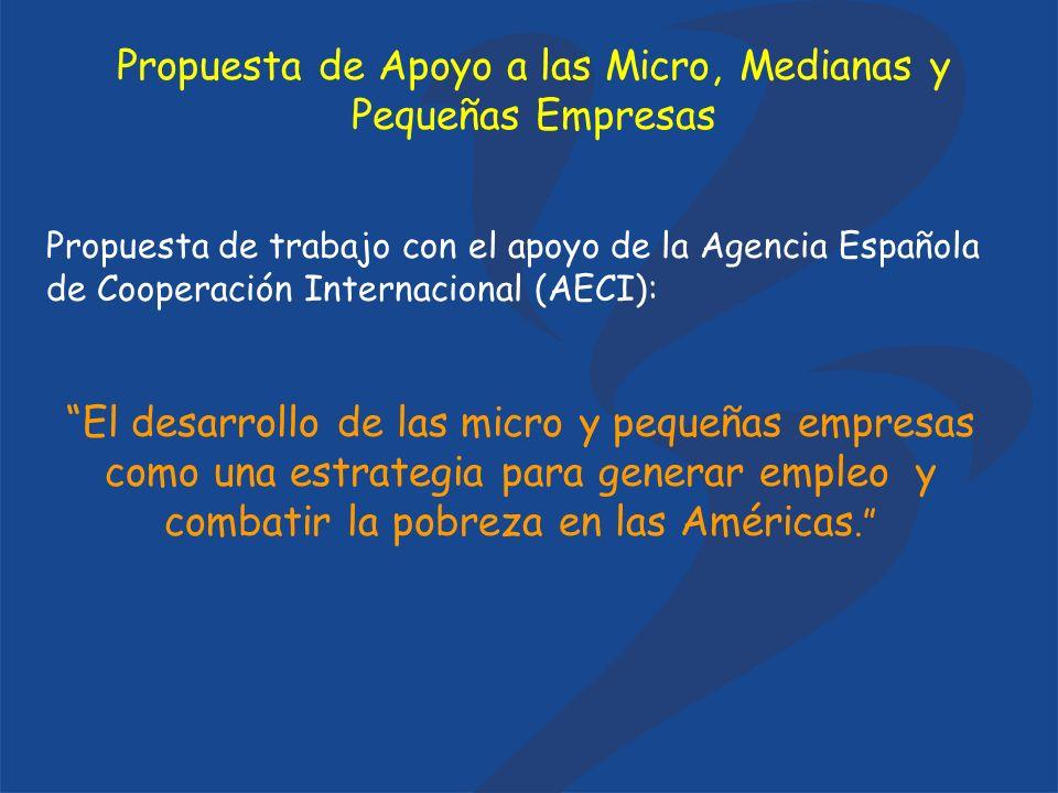 Propuesta de trabajo con el apoyo de la Agencia Española de Cooperación Internacional (AECI): El desarrollo de las micro y pequeñas empresas como una estrategia para generar empleo y combatir la pobreza en las Américas.
