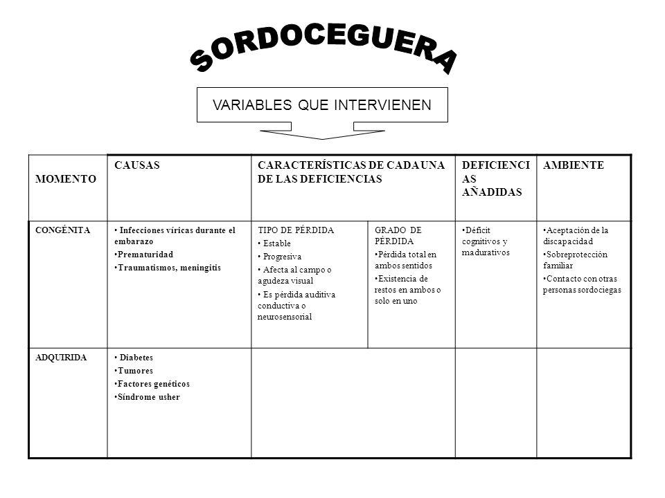 VARIABLES QUE INTERVIENEN MOMENTO CAUSASCARACTERÍSTICAS DE CADA UNA DE LAS DEFICIENCIAS DEFICIENCI AS AÑADIDAS AMBIENTE CONGÉNITA Infecciones víricas