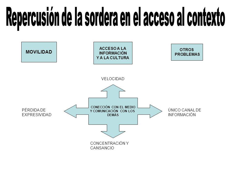 CONECCIÓN CON EL MEDIO Y COMUNICACIÓN CON LOS DEMÁS VELOCIDAD ÚNICO CANAL DE INFORMACIÓN CONCENTRACIÓN Y CANSANCIO PÉRDIDA DE EXPRESIVIDAD ACCESO A LA