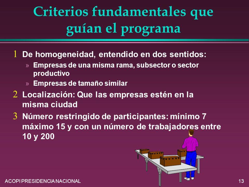 ACOPI PRESIDENCIA NACIONAL13 Criterios fundamentales que guían el programa De homogeneidad, entendido en dos sentidos: »Empresas de una misma rama, su