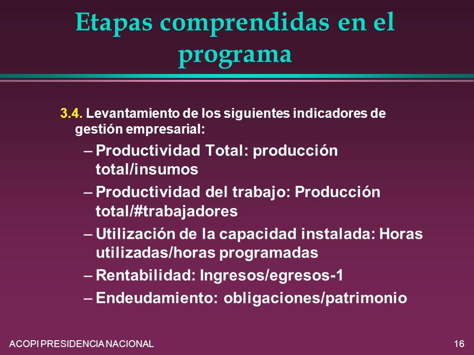 ACOPI PRESIDENCIA NACIONAL16 Etapas comprendidas en el programa 3.4. Levantamiento de los siguientes indicadores de gestión empresarial: –Productivida
