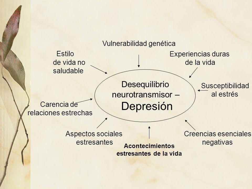 Desequilibrio neurotransmisor – Depresión Vulnerabilidad genética Experiencias duras de la vida Susceptibilidad al estrés Creencias esenciales negativ
