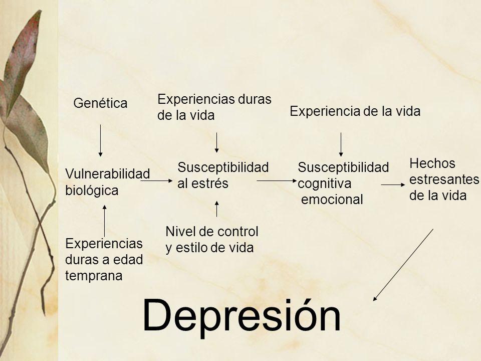 Vulnerabilidad biológica Susceptibilidad al estrés Susceptibilidad cognitiva emocional Hechos estresantes de la vida Depresión Genética Experiencias d