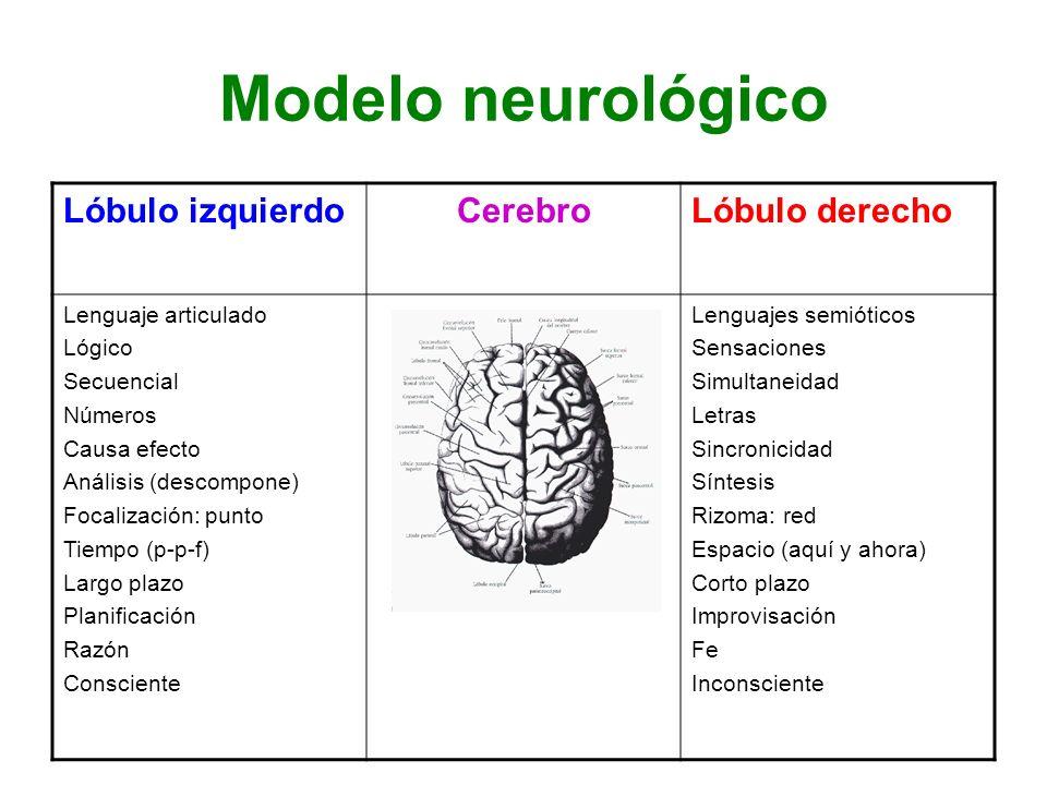 Modelo neurológico Lóbulo izquierdoCerebroLóbulo derecho Lenguaje articulado Lógico Secuencial Números Causa efecto Análisis (descompone) Focalización